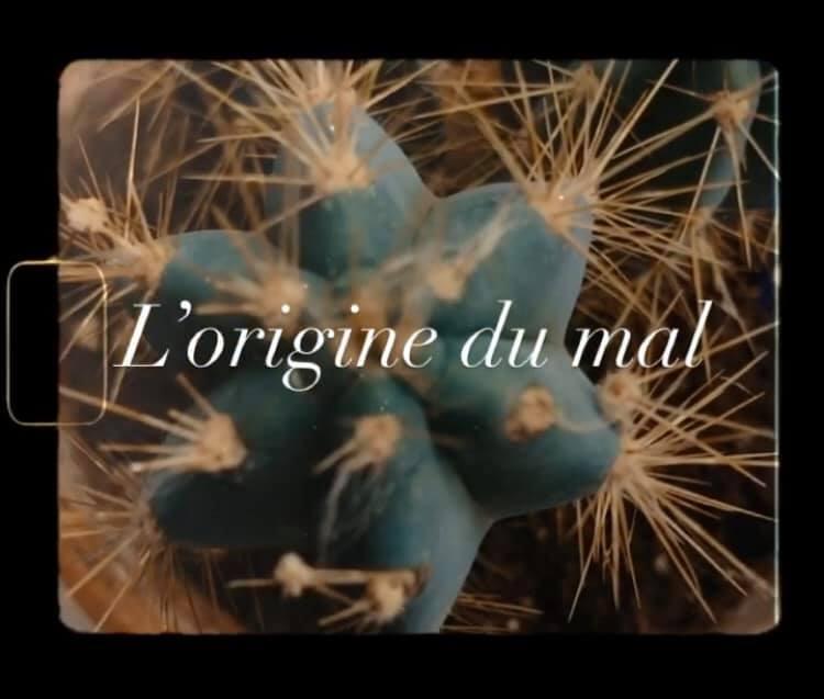 Le Journal de Sébastien Marnier, épisode 4